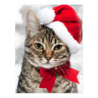 赤いサンタの帽子のクリスマス猫 ポストカード