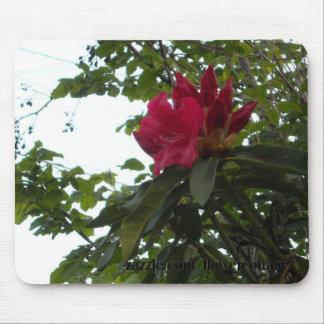 赤いシャクナゲの花および芽 マウスパッド