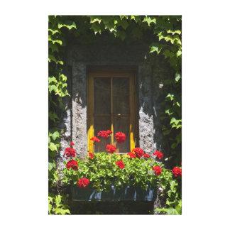 赤いゼラニウムによってはウィンドウ・ボックスが開花します キャンバスプリント
