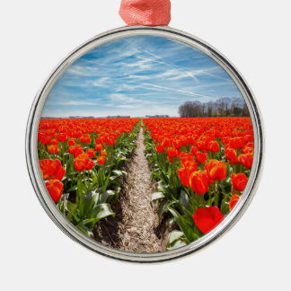 赤いチューリップの分野は青空と開花します メタルオーナメント