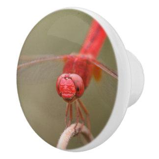 赤いトンボのカスタムなキャビネットのノブ/ セラミックノブ