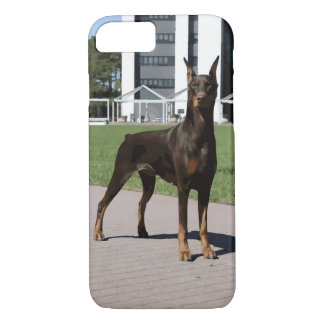 赤いドーベルマン犬(v9-2) iPhone 8/7ケース