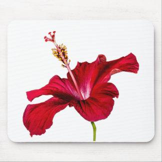 赤いハイビスカスの花の側面図 マウスパッド