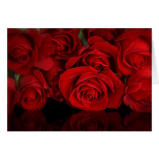 赤いバラのブランク カード