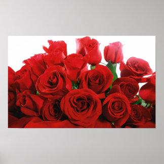 赤いバラのプリント ポスター