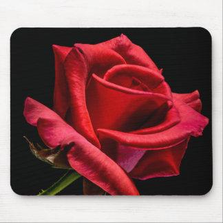 赤いバラのマウスパッド マウスパッド