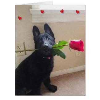 赤いバラの大きいバレンタインとの初恋はありません カード