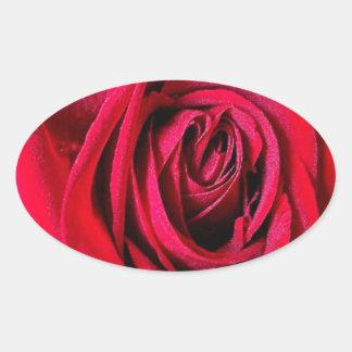 赤いバラの情熱の楕円形のステッカー 楕円形シール