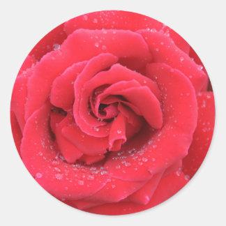 赤いバラの雨滴 ラウンドシール