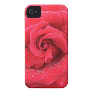 赤いバラの雨滴 Case-Mate iPhone 4 ケース