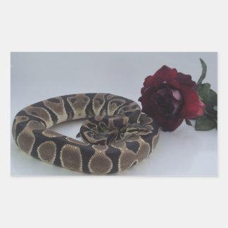 赤いバラを持つバンドを付けられた王室のな大蛇 長方形シール