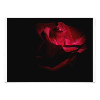 赤いバラ カード