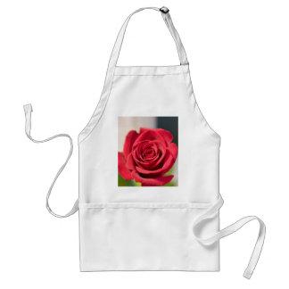赤いバラ スタンダードエプロン