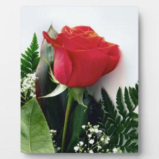 赤いバラ フォトプラーク
