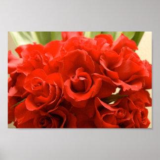 赤いバラ ポスター