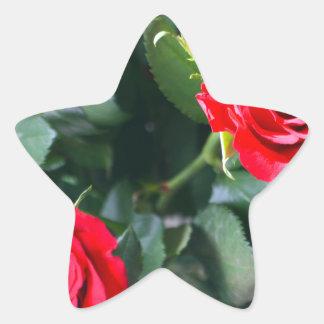 赤いバラ 星シール