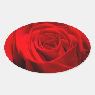 赤いバラ 楕円形シール
