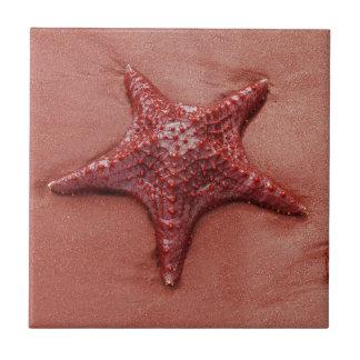 赤いヒトデ 正方形タイル小