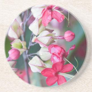 赤いピンクおよび白い熱帯花 コースター