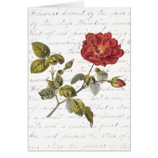 赤いフランス語は上がりました: クララBalfour著花の文字 カード