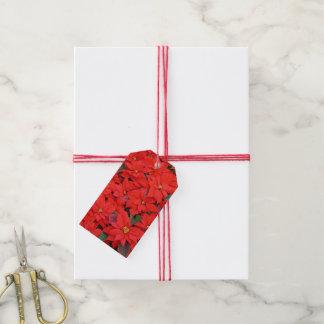 赤いポインセチアIのクリスマスの休日の花柄の写真 ギフトタグ
