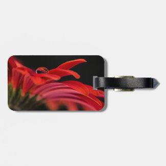 赤いマクロガーベラの花 ラゲッジタグ