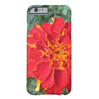 赤いマリーゴールドの花 BARELY THERE iPhone 6 ケース
