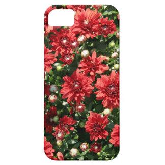 赤いミイラ iPhone SE/5/5s ケース