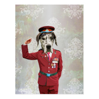赤いユニフォームのおもしろい犬 ポストカード