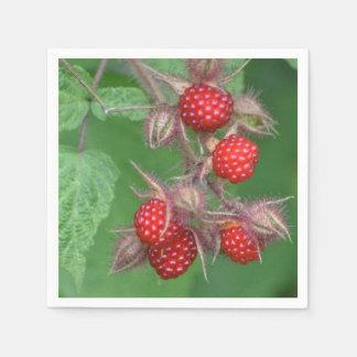 赤いラズベリーの紙ナプキン スタンダードカクテルナプキン