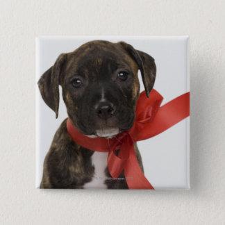 赤いリボンを身に着けているピットブルの子犬 5.1CM 正方形バッジ