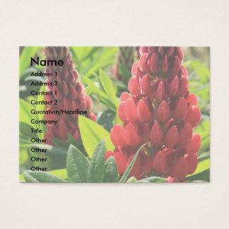 赤いルピナス属の名刺 名刺