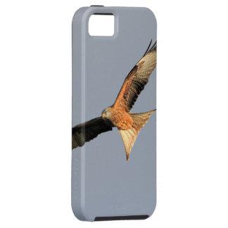 赤い凧の猛禽 iPhone SE/5/5s ケース