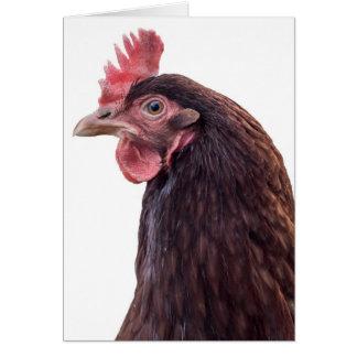 赤い層の雌鶏の高いプロフィールの写真 カード
