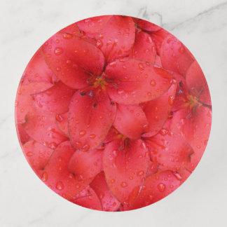赤い庭ユリの写真 トリンケットトレー