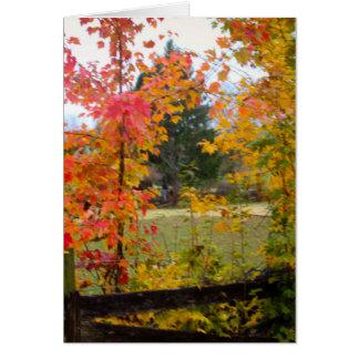 赤い木とのNOTECARD カード