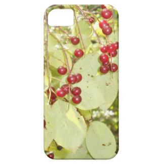 赤い果実の葉のiphoneの箱 iPhone SE/5/5s ケース