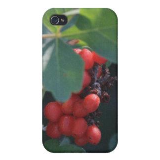 赤い果実4/4s iPhone 4/4Sケース