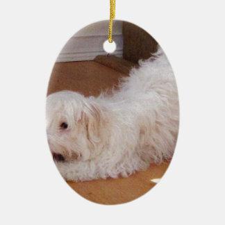 赤い球と遊んでいるHavaneseの白い子犬 セラミックオーナメント