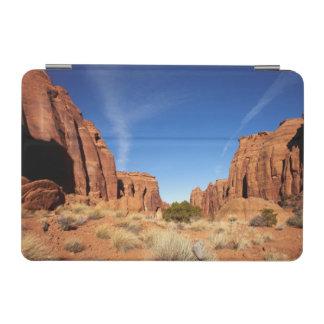 赤い石渓谷 iPad MINIカバー