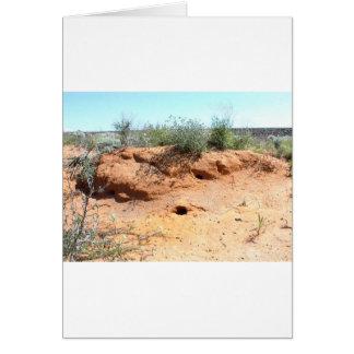 赤い砂の砂漠の生き物の住居 カード
