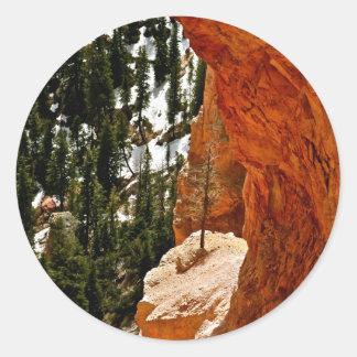 赤い砂岩の石の弾力性のある松の木 ラウンドシール