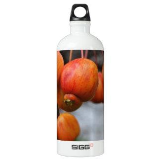 赤い秋のりんごの束 ウォーターボトル