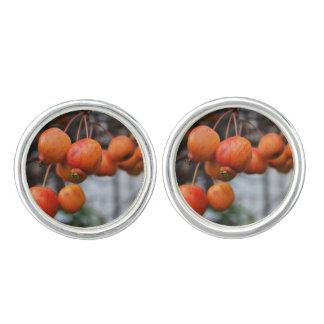 赤い秋のりんご カフボタン