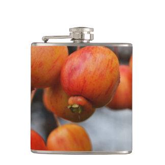 赤い秋のりんご フラスク