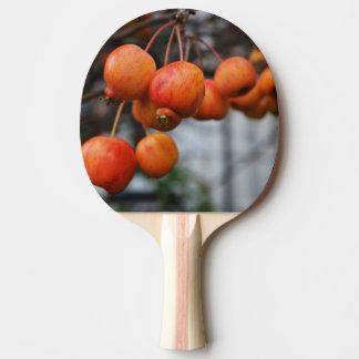 赤い秋のりんご 卓球ラケット