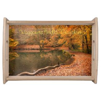 赤い秋の秋の森林景色の森林 トレー