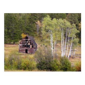 赤い納屋および樺の木 ポストカード