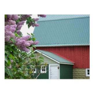 赤い納屋の田園生命春のライラックの開花の郵便はがき ポストカード