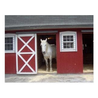 赤い納屋の白馬 ポストカード